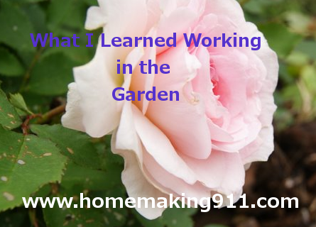 What I Learned Working in the Garden